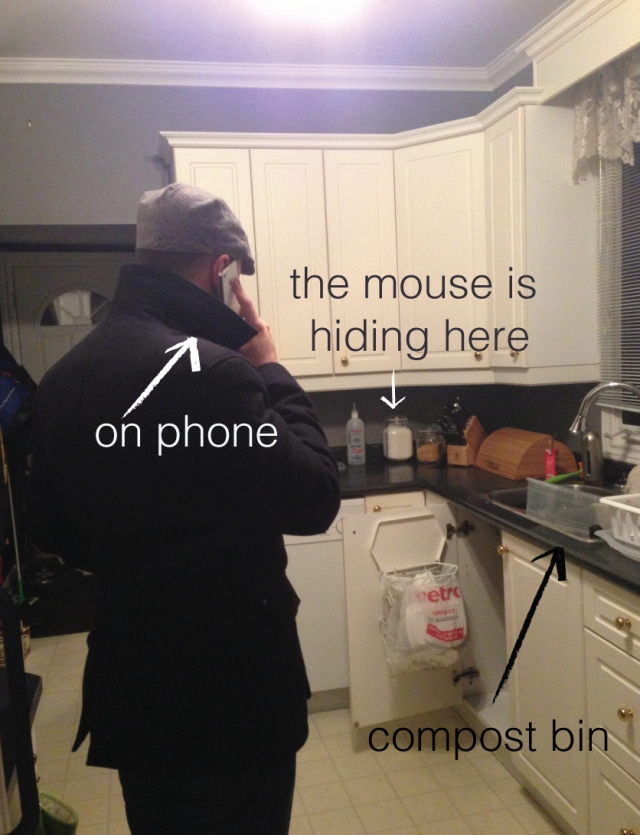 mouseinthehouse