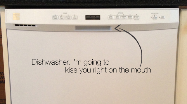 Dishwasher5